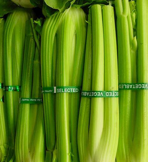 celery.jpg - celery