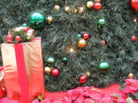 christmastreepackage.jpg - holiday tree & package