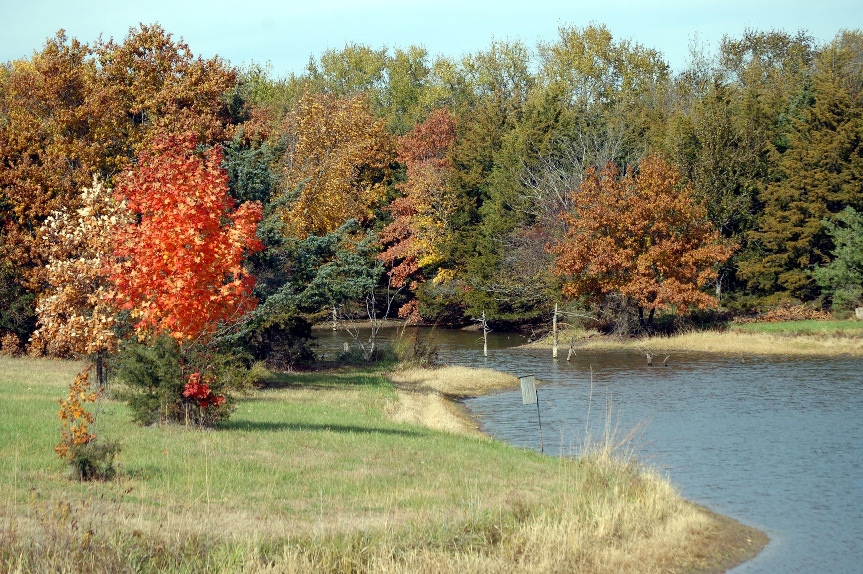 dsc_2512.jpg - pond in autumn