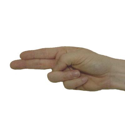 H In Sign Language h jpg - American Sign Language