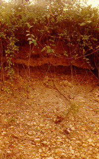 unconsolidated gravel bed and soil profile Franconia Virginia