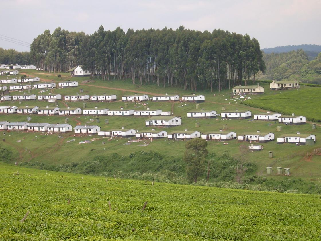 Tea workers houses