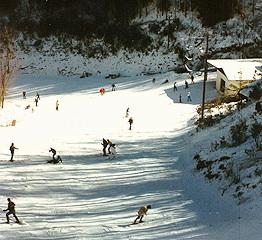 tn069.jpg - Skiing in Tennessee.