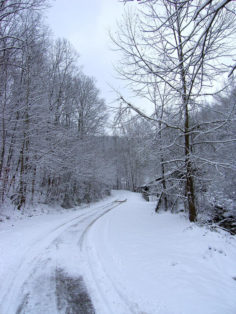 winterroad.jpg - Winter Road