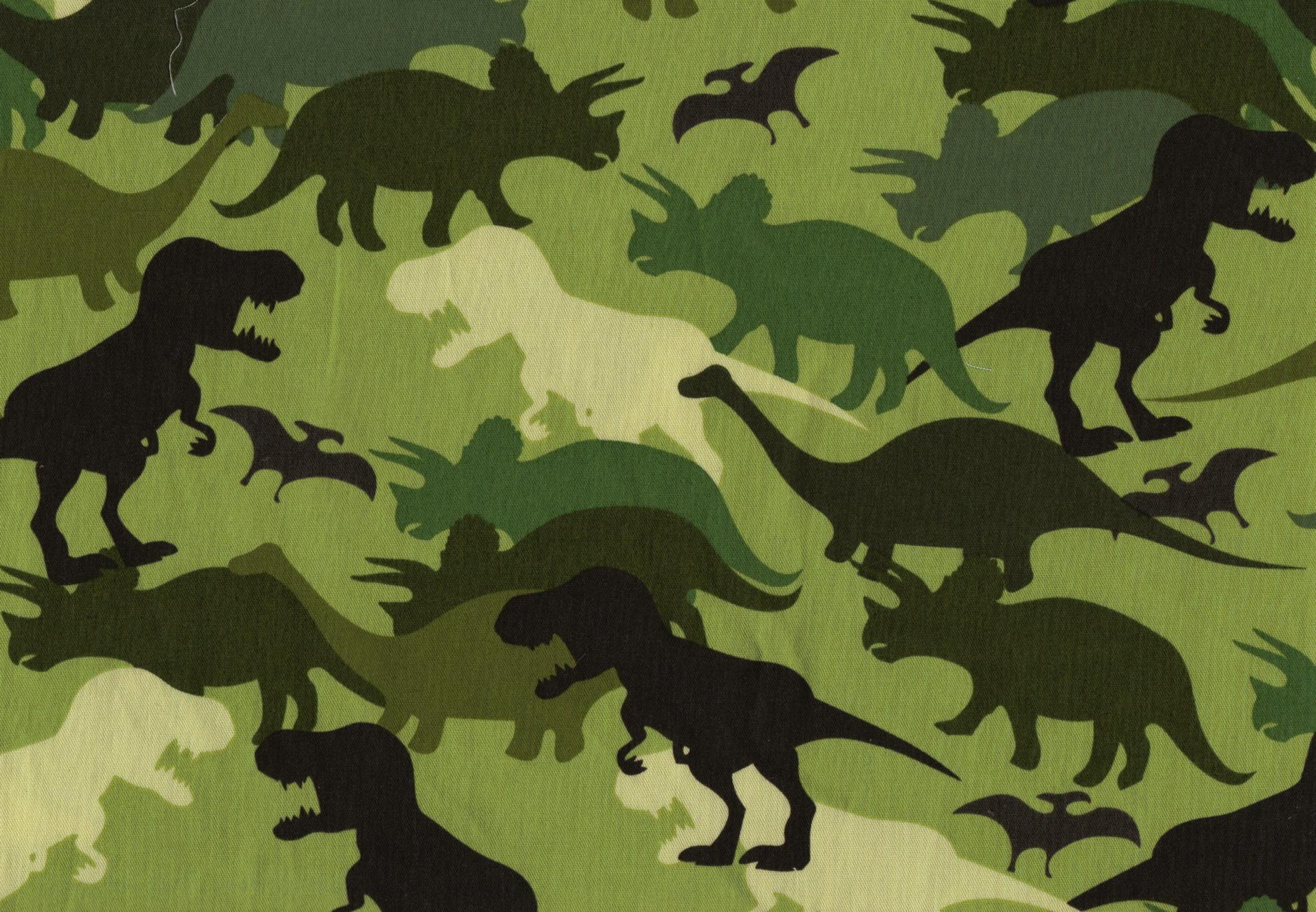fabric163.jpg - dinosaur fabric
