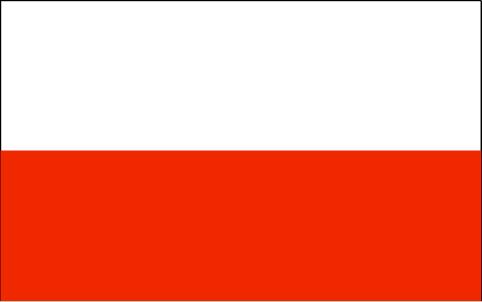 Automobiliai is Jav Polska